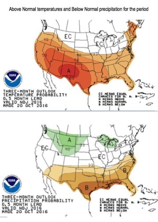 Figure 4: Above normal temperatures and below normal precipitation are predicted through January.